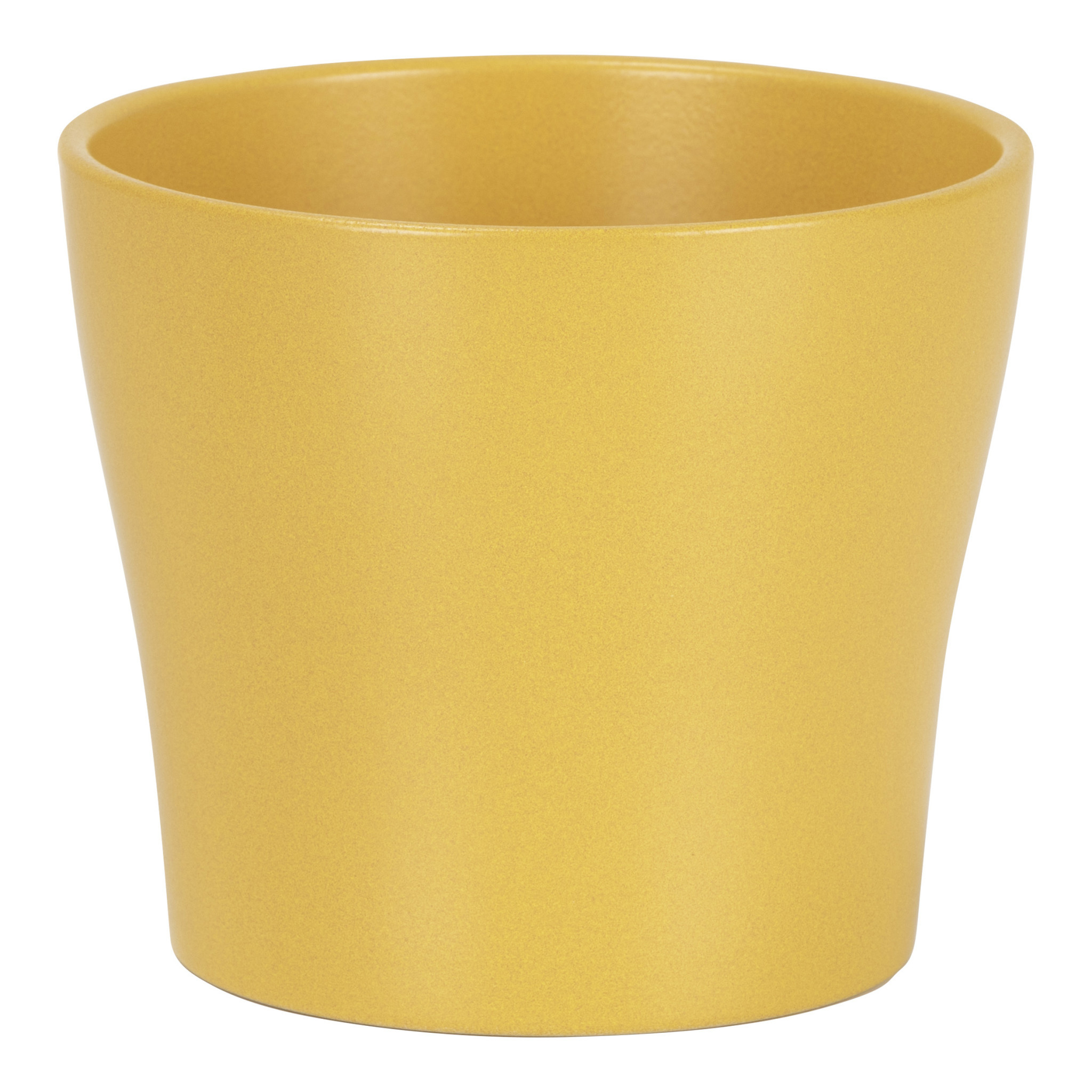 Pot Curcuma-1