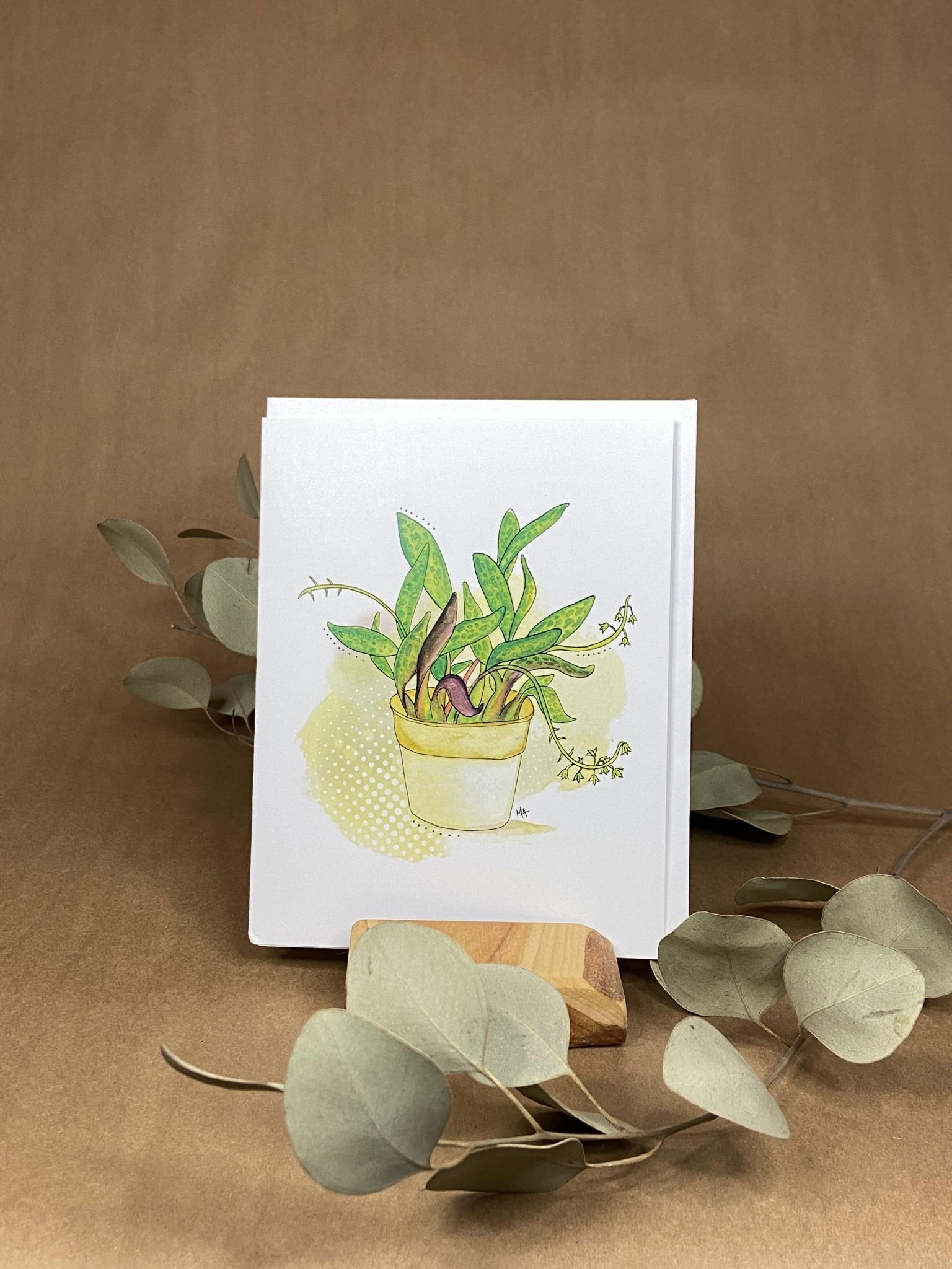 Pot plante - Carte-1