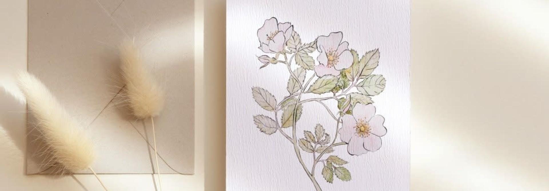 mmr- rose carte