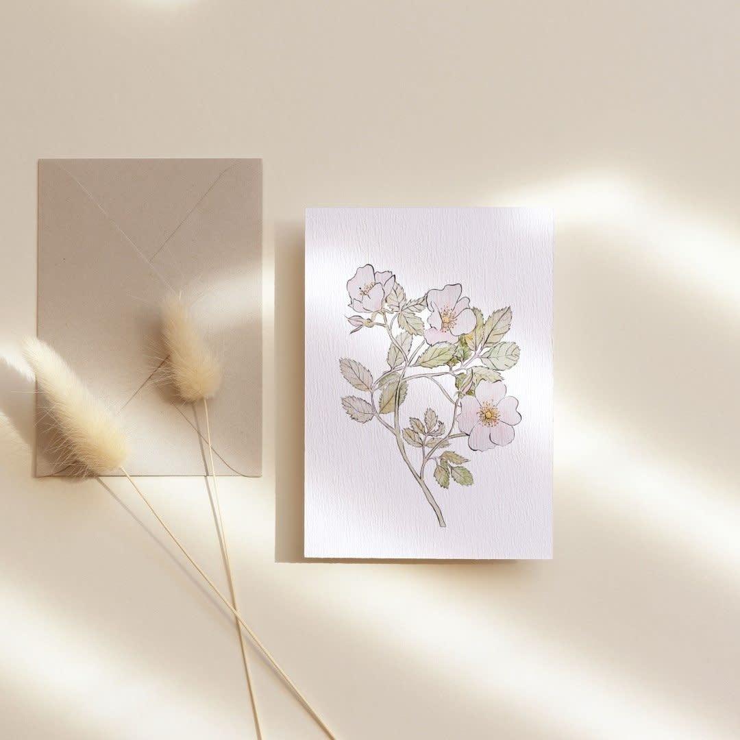 mmr- rose carte-1