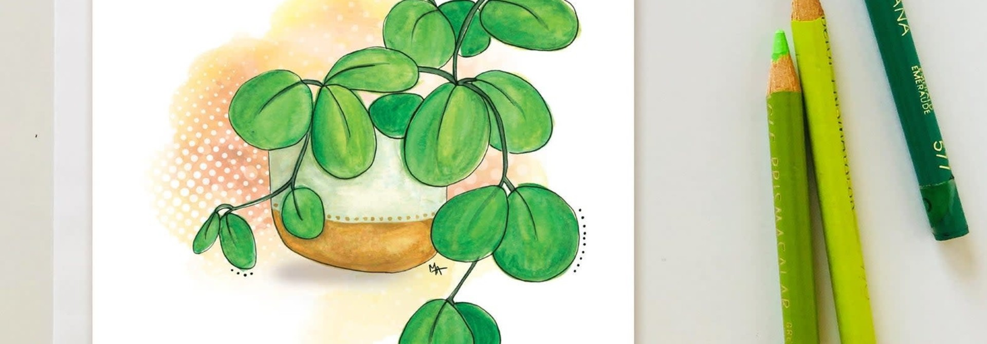 Plantes d'intérieures - Carte A1