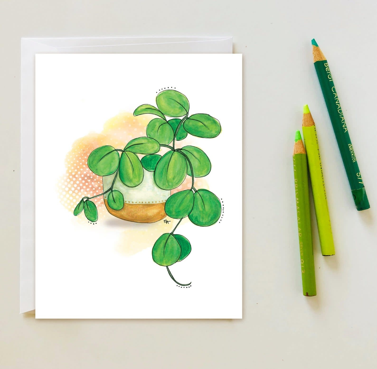 Plantes d'intérieures - Carte A1-1