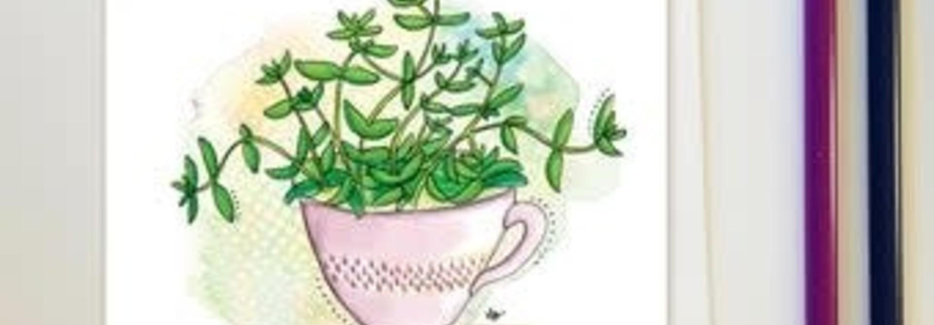 Plantes d'intérieurs tasse - Carte