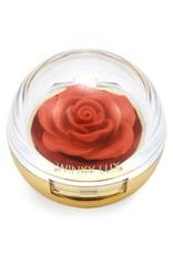 Cheeky Rose Blush