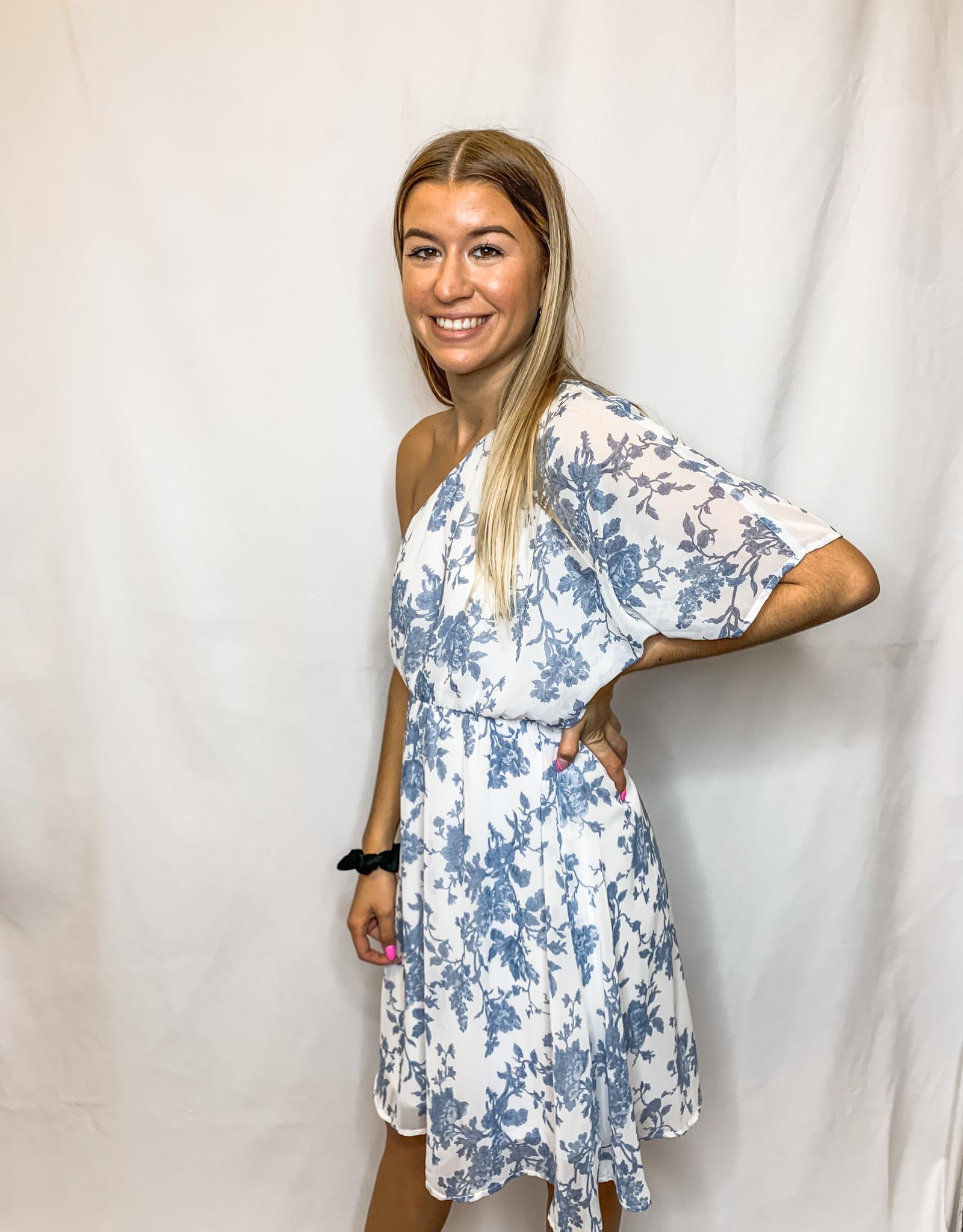 Blue Toile Dress