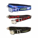 Island Surf Company Cycle Dog Collar