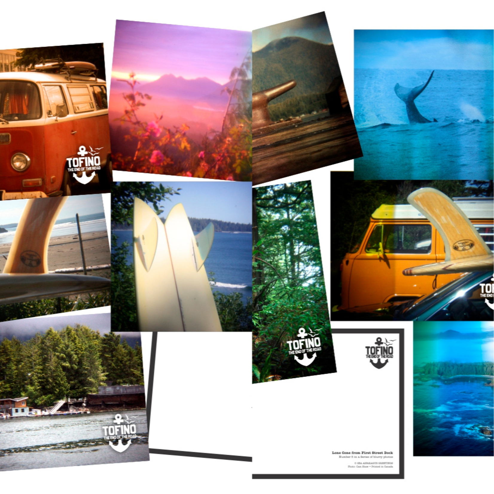 Local Tofino: End of the Road (5) Postcard Set - Series 1