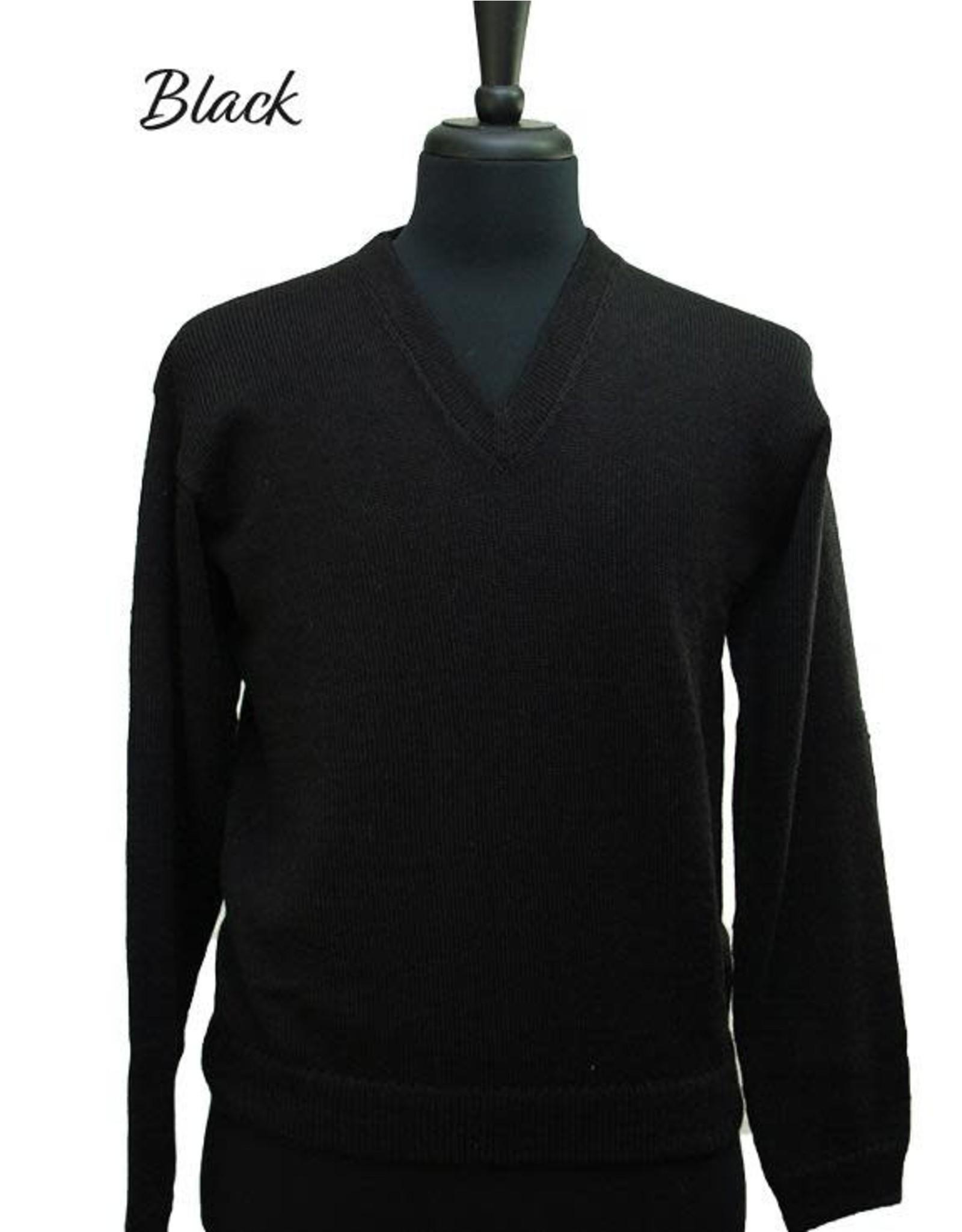 The Sweater Venture Lightweight V-Neck Alpaca Pullover