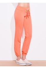 Sundry Sundry Stripe Sweatpants