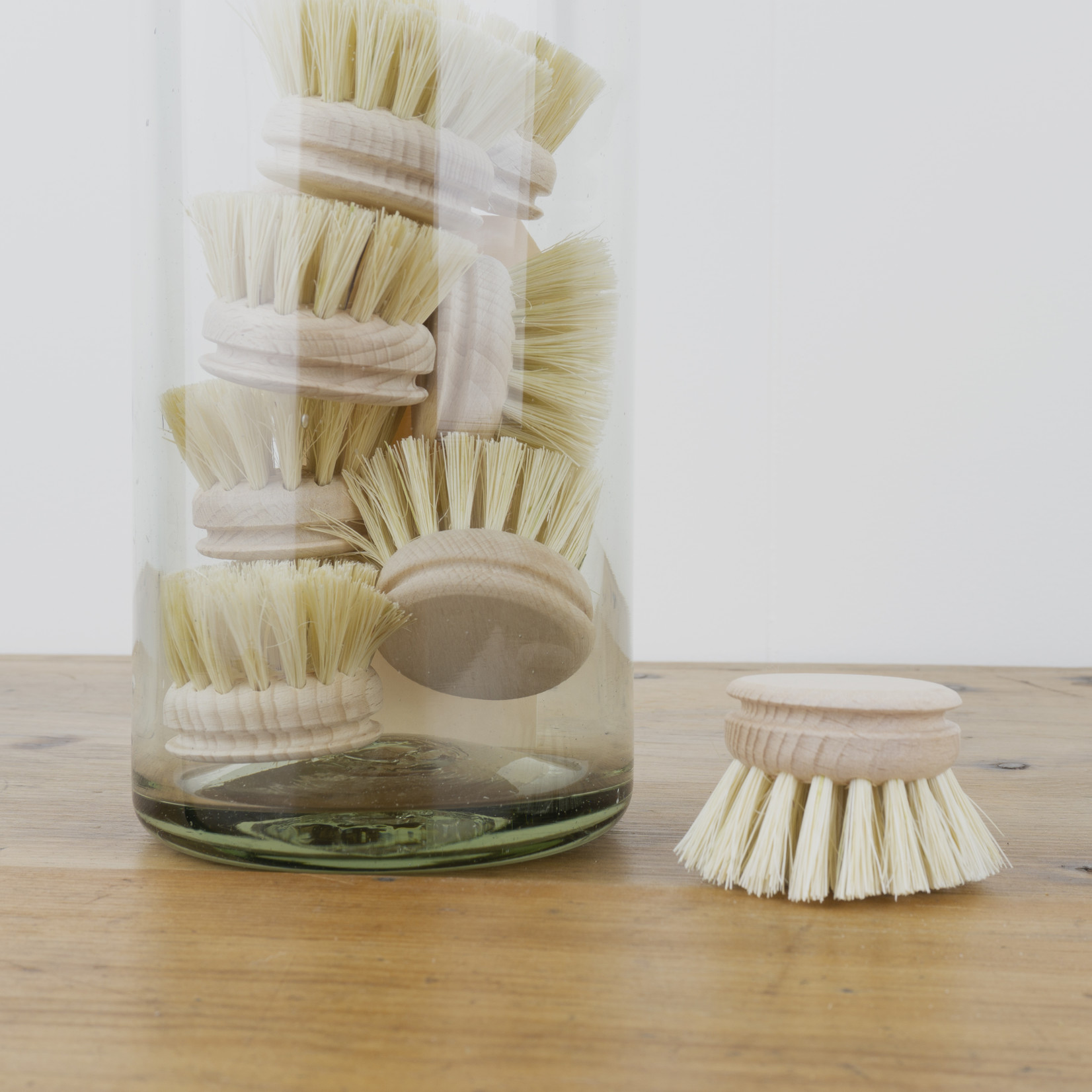 Round Replacement Bristles for Everyday Dishbrush