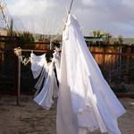 Outdoor Chores
