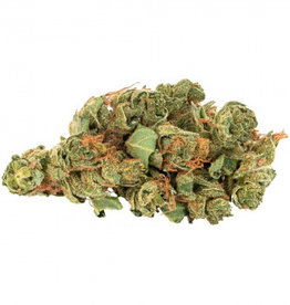 Daily Special Daily Special - Sativa 7G