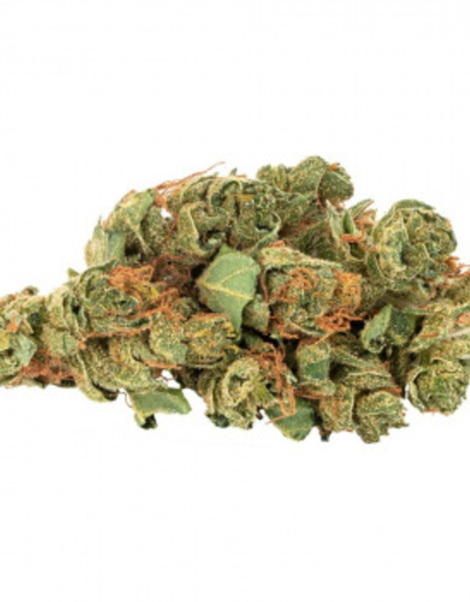 Daily Special Daily Special - Sativa 3.5G