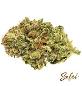Solei Solei - Gather - 3.5G