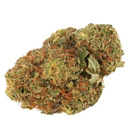 Daily Special Daily Special - Indica 15G