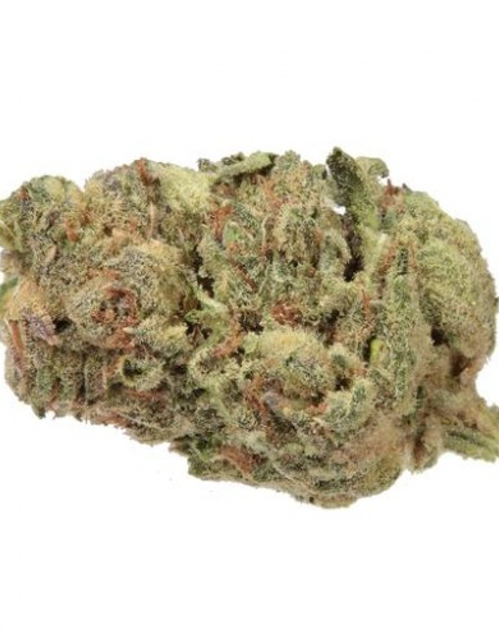 Haven St. Haven St - No. 419 Couch Surf - 3.5G