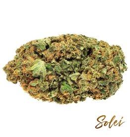 Solei Solei - Free - 3.5G