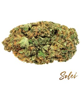 Solei Solei - Free - 7G