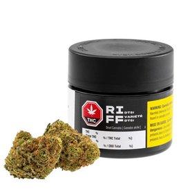 Riff Riff - DT81 - 3.5G