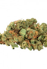 Daily Special **Daily Special - Sativa - 3.5g