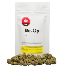 Re-UP Re-Up - Sativa 28G