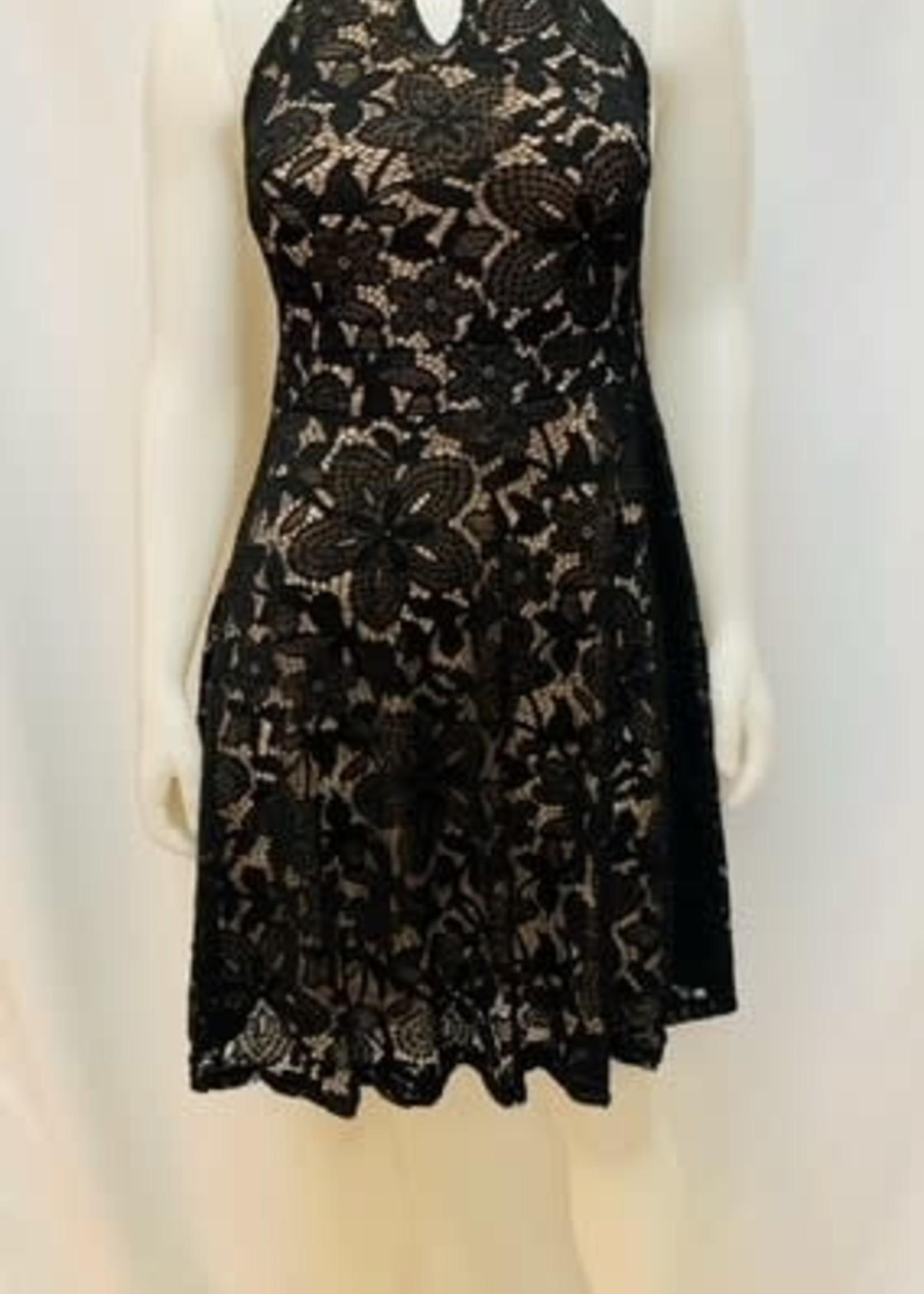 Papillon Lace Dress