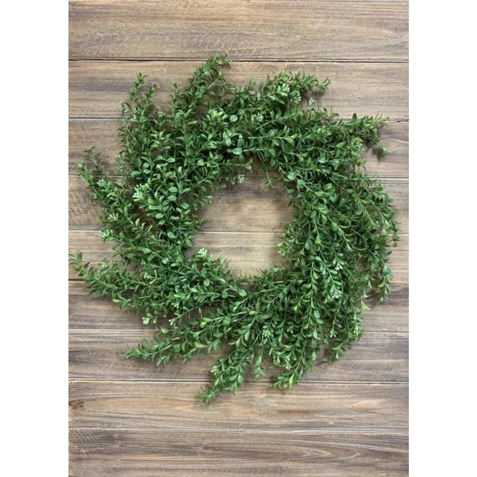 Common Boxwood Wreath
