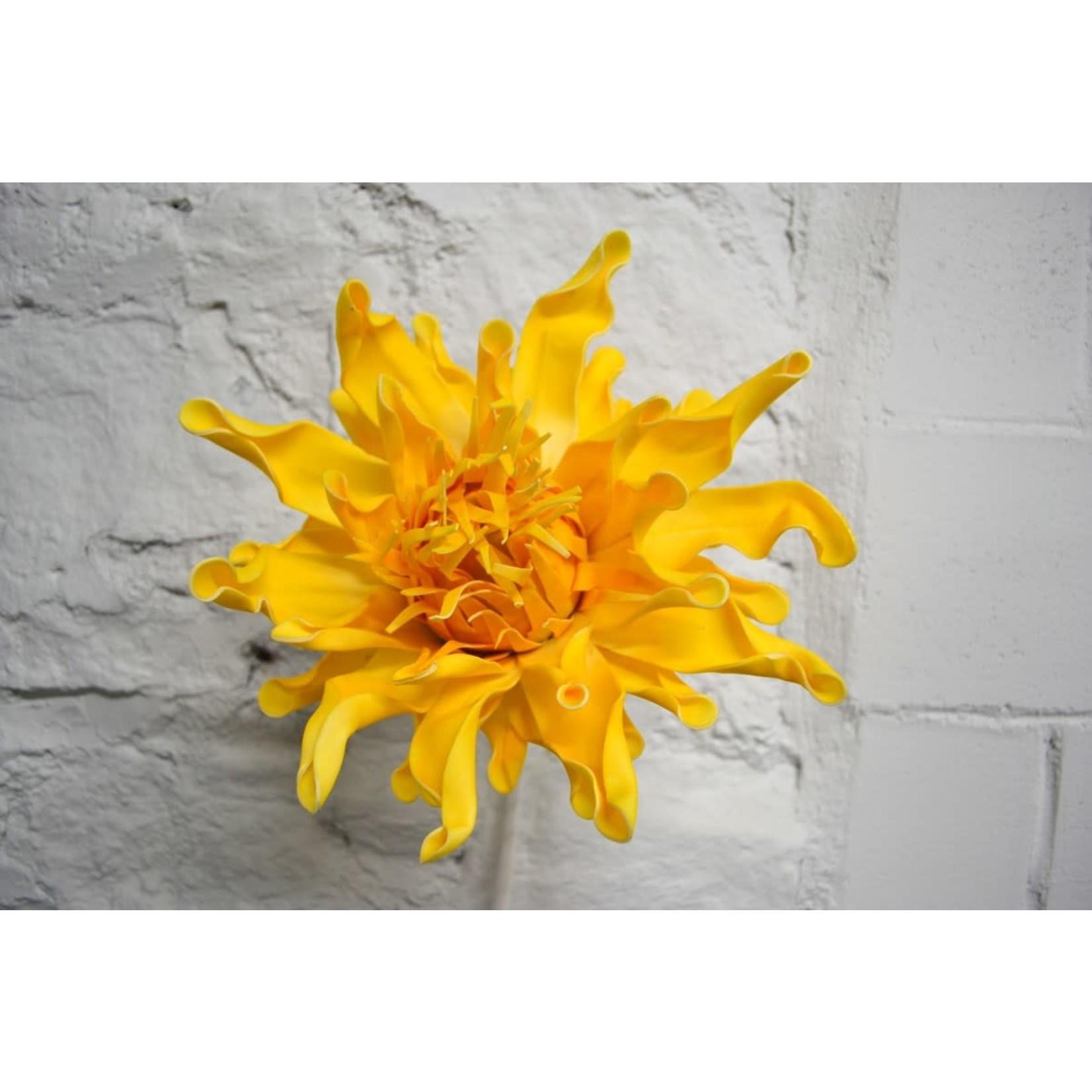 Yellow Acaena Flower