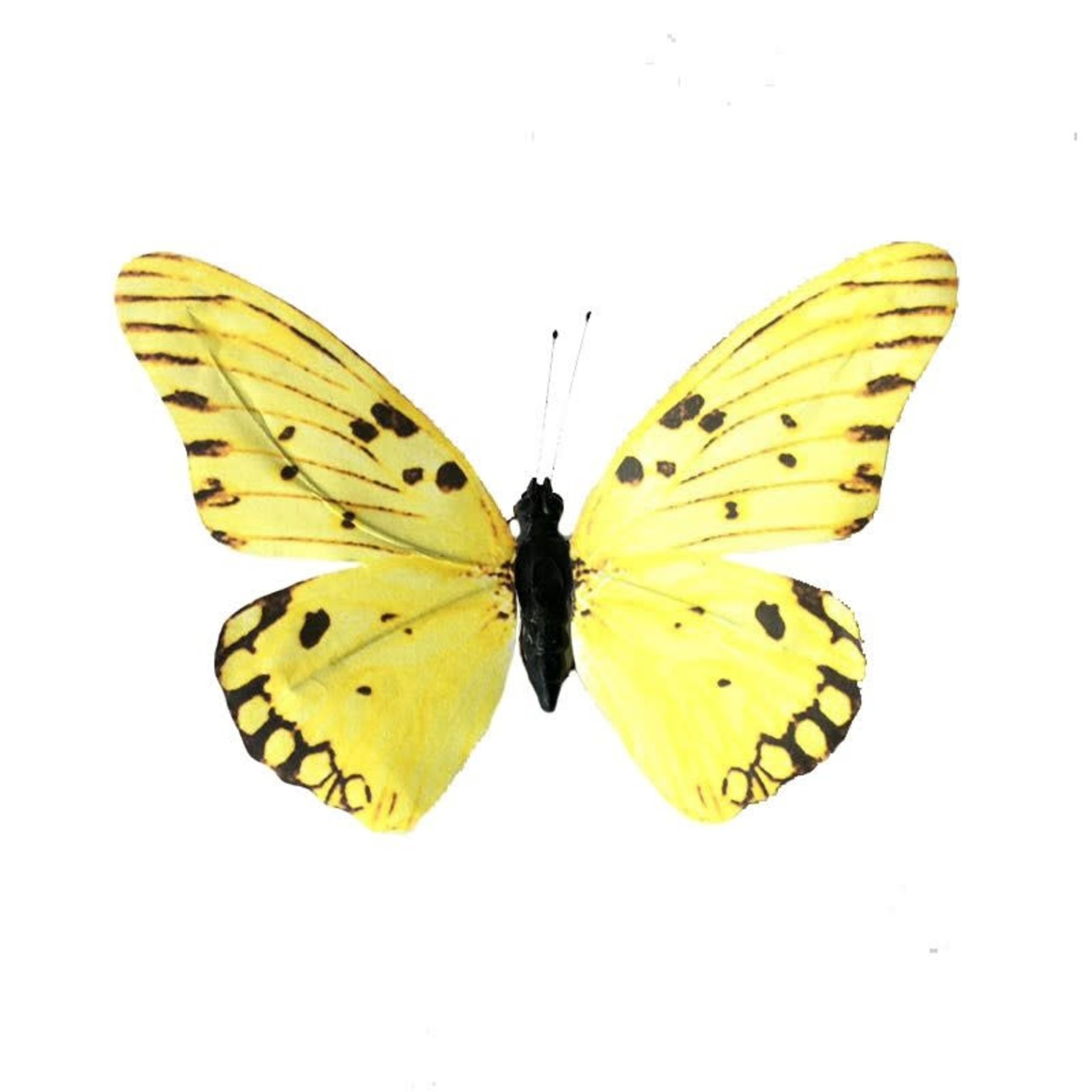 Paper Butterfly Yellow