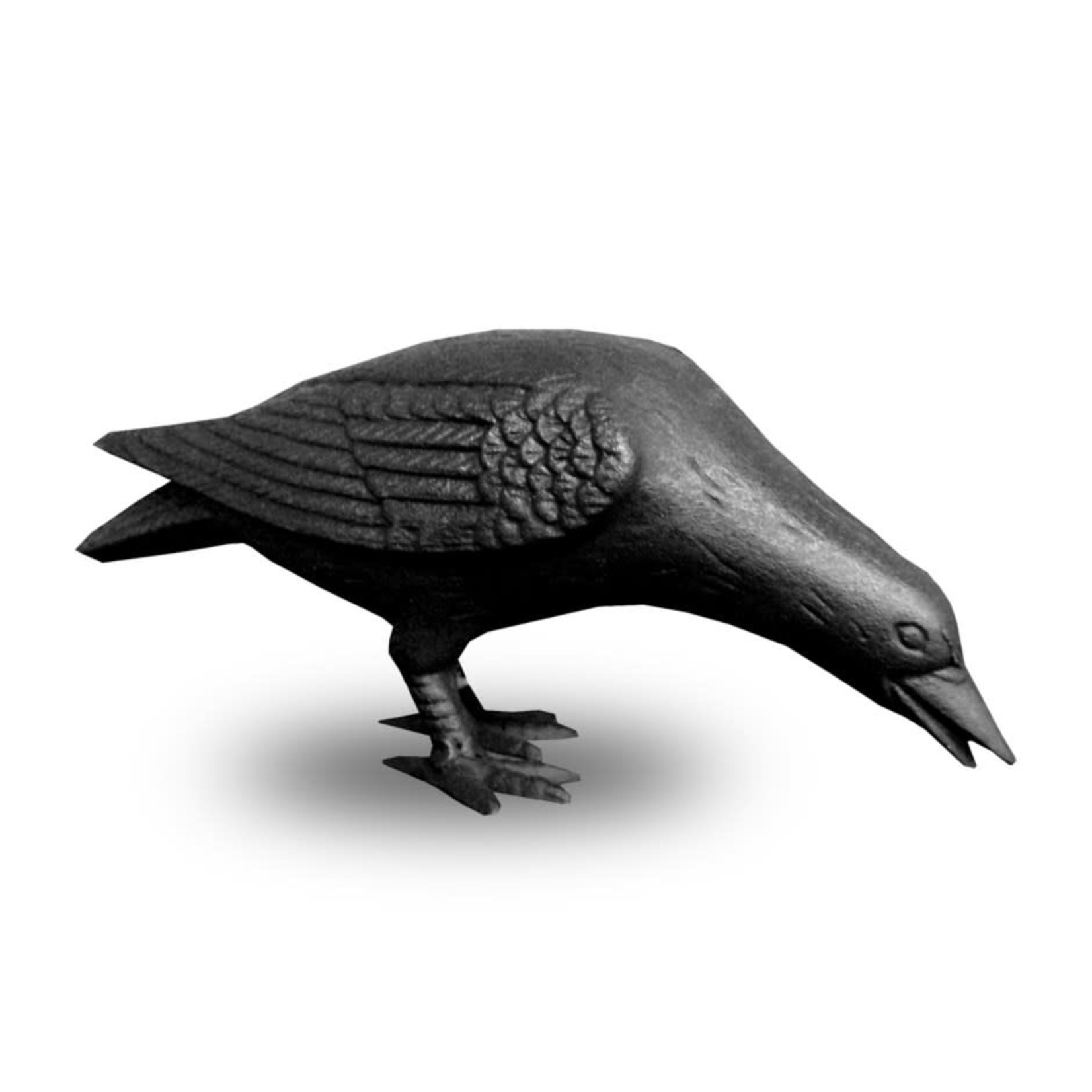 Cast Iron Crow -  Head Down