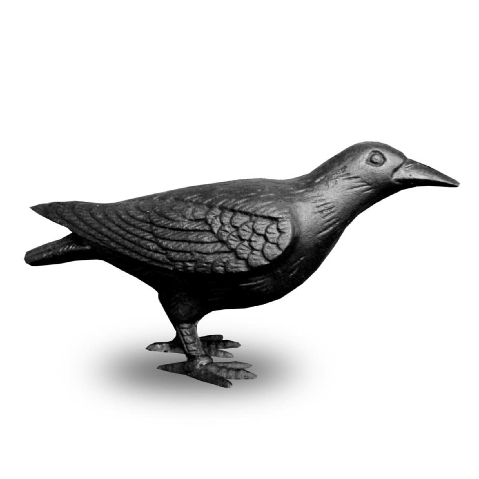Cast Iron Crow -  Head Up