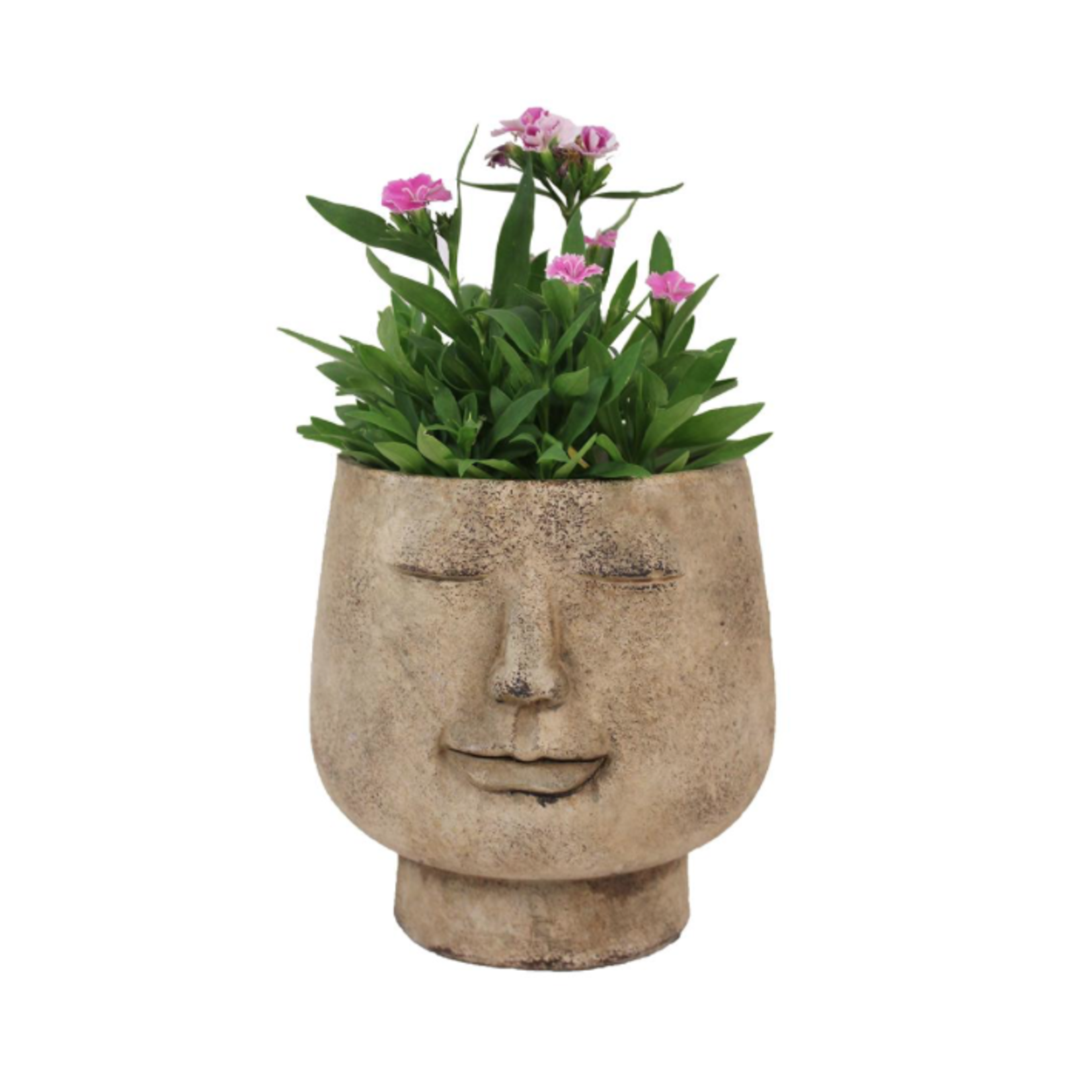 Smile Face Planter Pot
