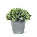 Green Spade Leaf Plant Pot