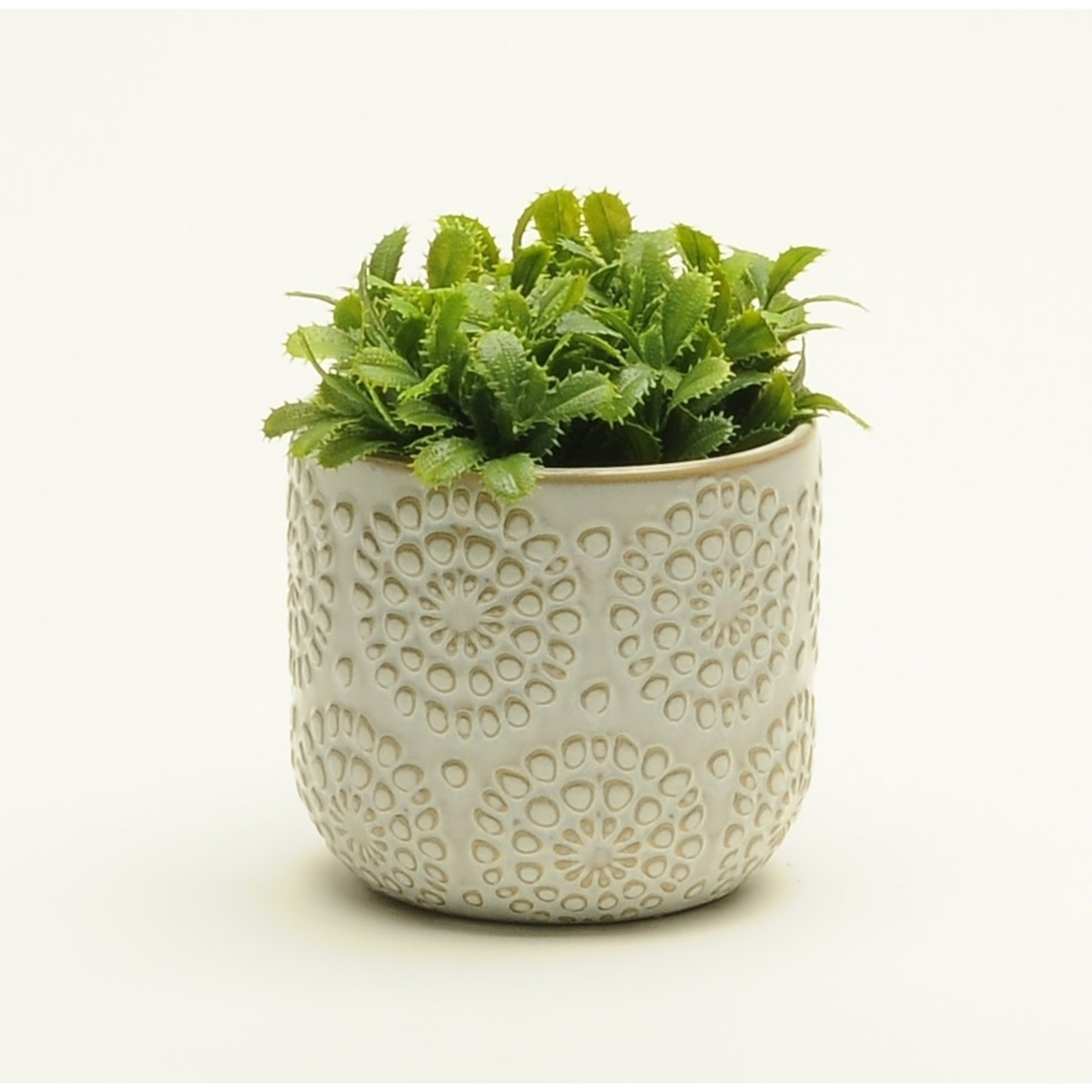 White Embossed Pot- Medium