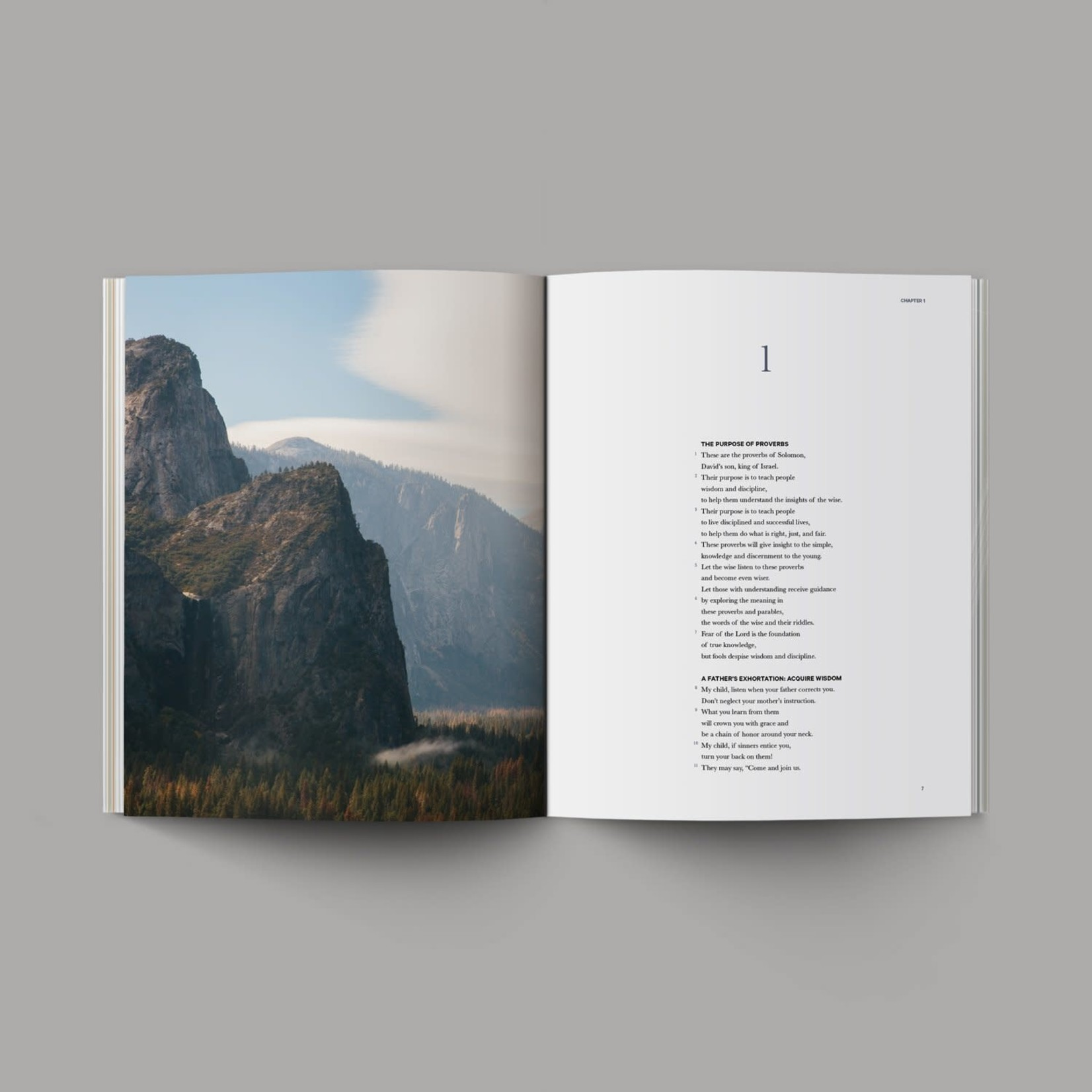 Book Of Proverbs - NLT