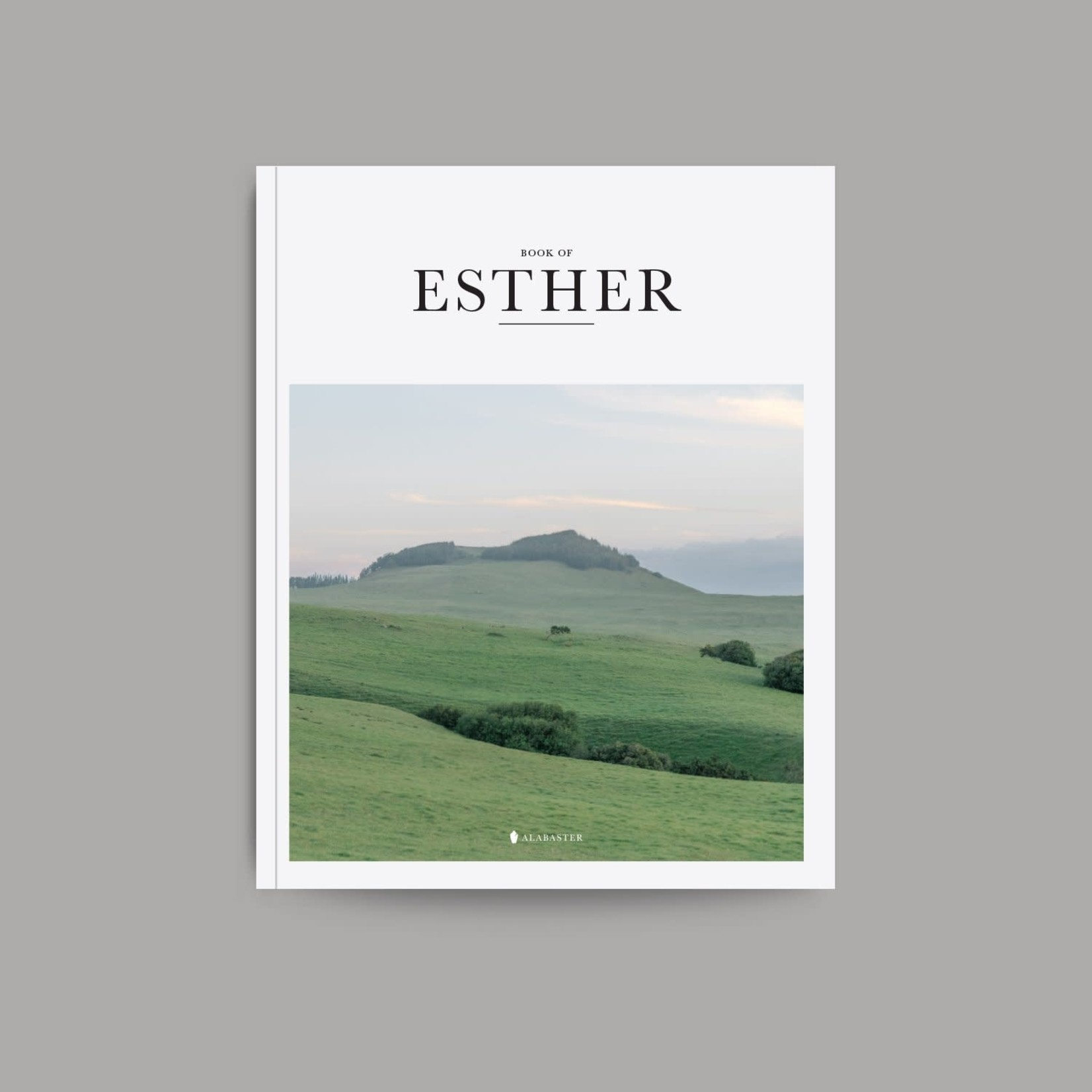 Book Of Esther - NLT