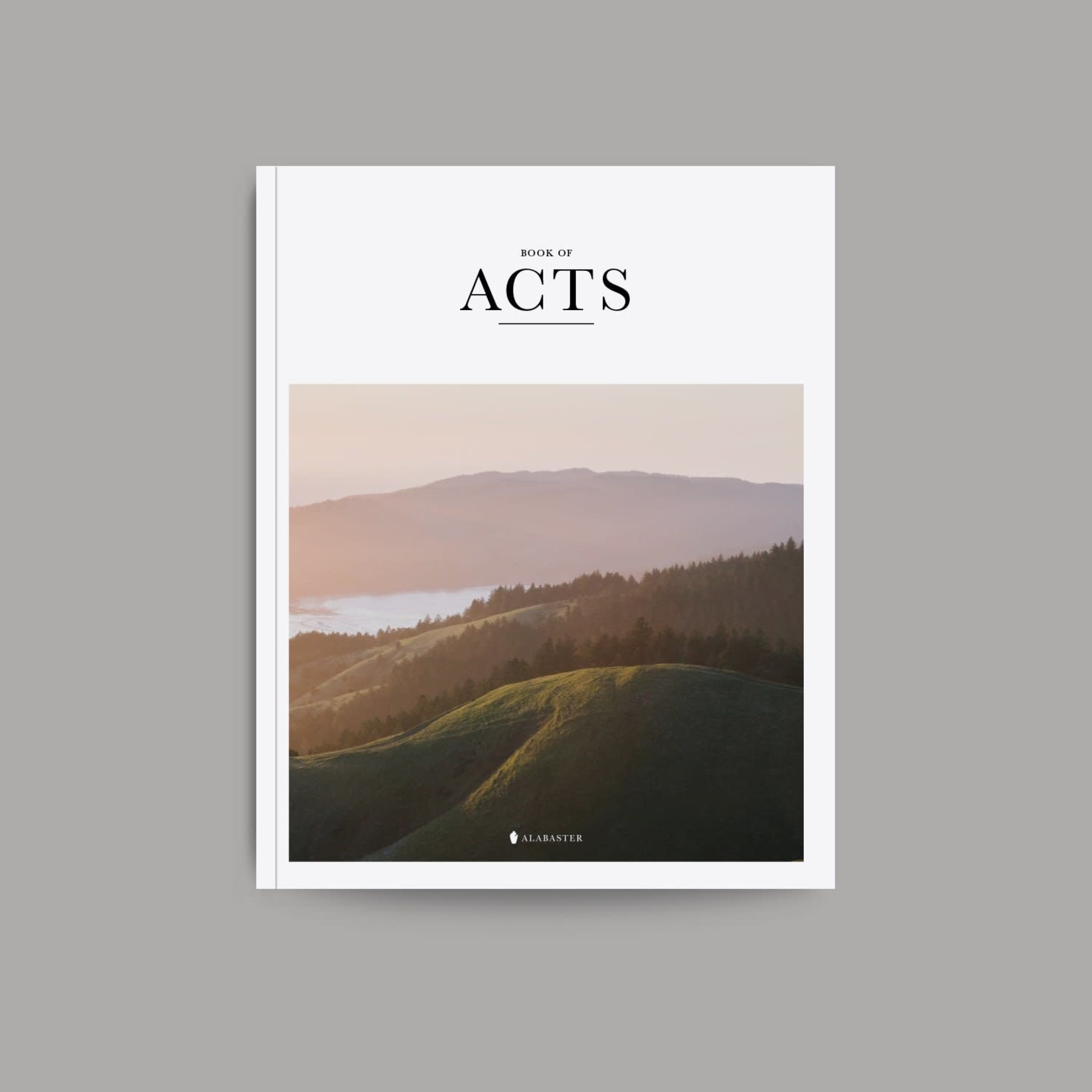 Alabaster Bible - Book Of Acts - NLT