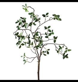 "Torre & Tagus Grove Mini Leaf 44"" Branch Spray"