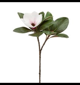 "Torre & Tagus Magnolia Bloom Spray 26"""
