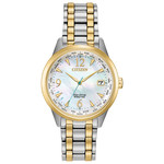 Citizen Citizen World Time Perpetual Watch