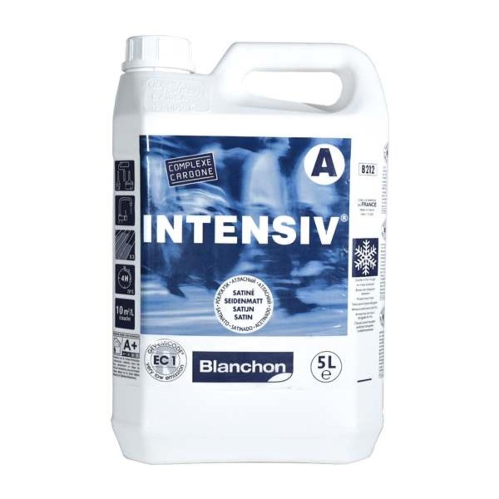Blanchon Intensiv - Vernis à plancher commercial