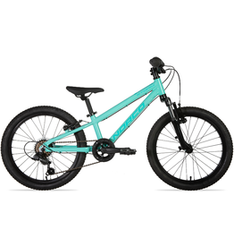 """Norco 2021 Norco Storm 2.2 turquoise 20"""""""