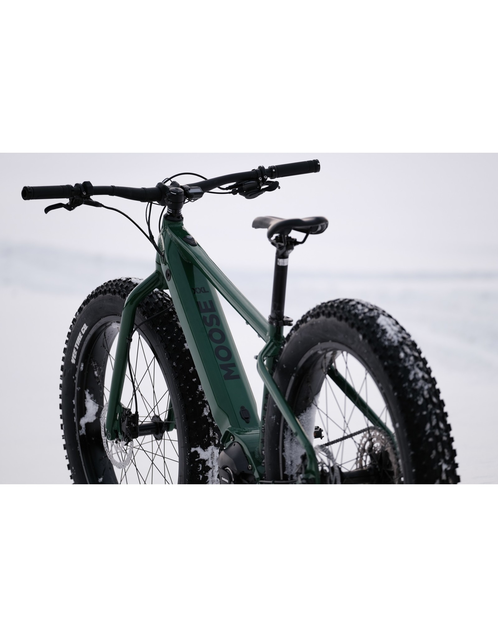 Moose 2021 Moose eFatbike vert kale