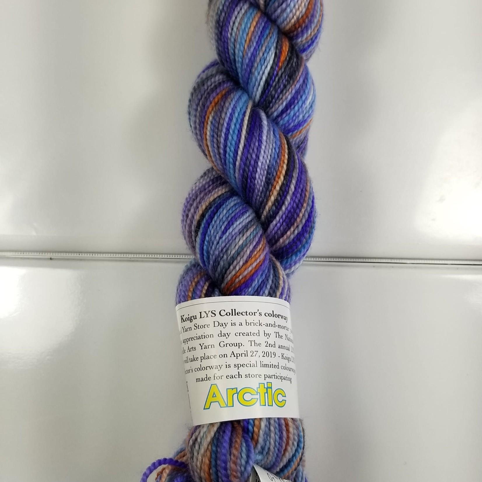 Koigu Koigu LYS Collector's Colorway