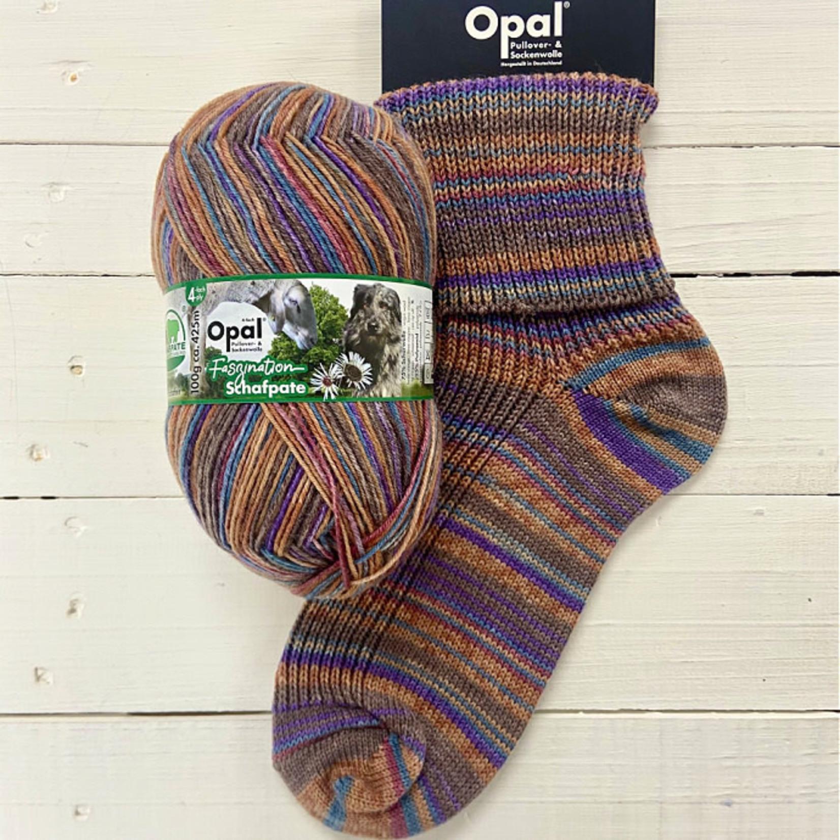 Opal Schapfate 13 by Opal