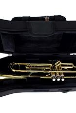 Protec Protec Instrument Cases