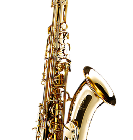 Forestone Forestone Japan RX series tenor saxophone