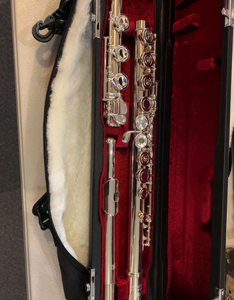 Eastman Eastman EFL220SE-BO Flute, Split E, Open Hole, B Foot