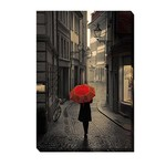 """*12"""" x 18"""" - Red Rain' - Wrapped Canvas Photograph Print"""