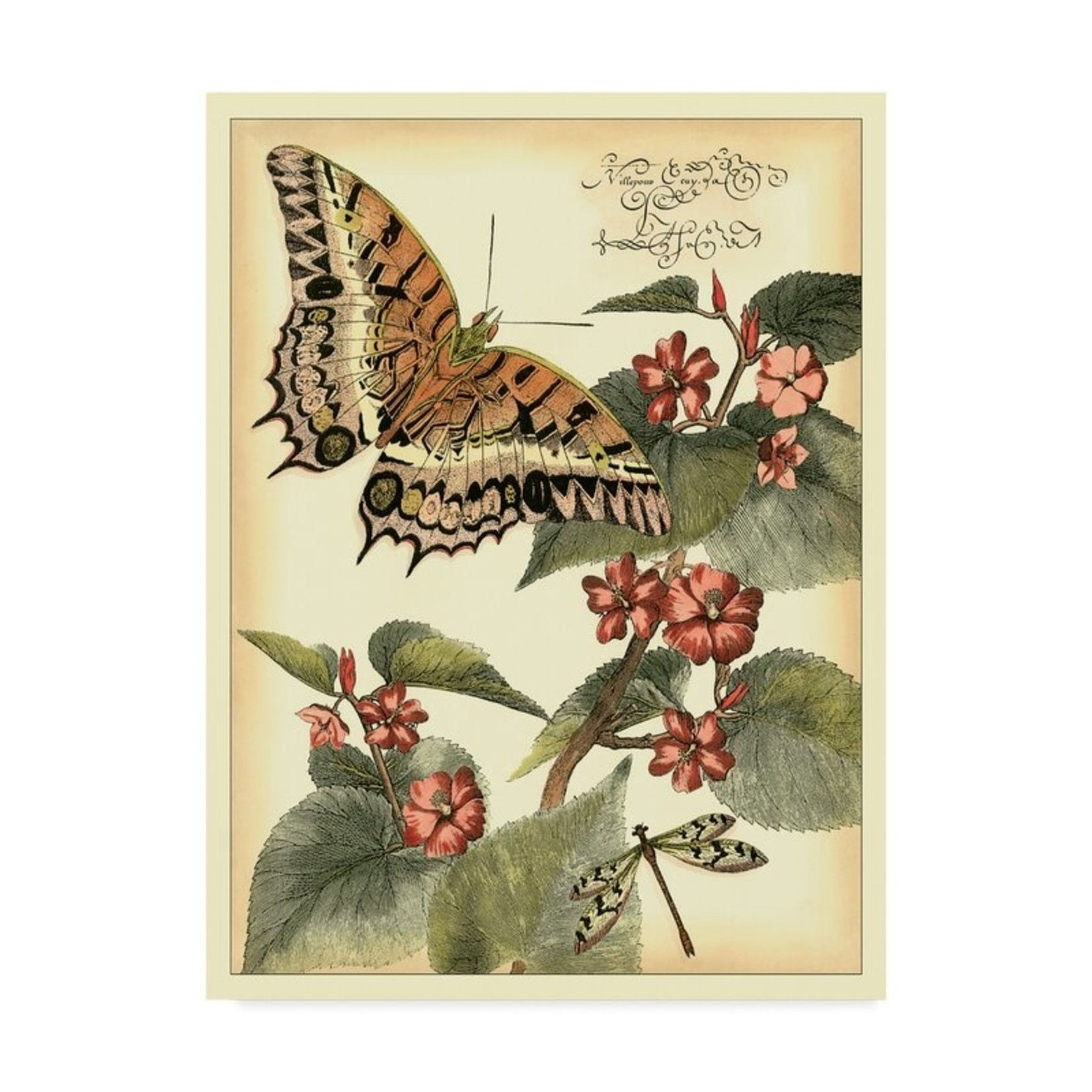 """*Whimsical Butterflies II' Graphic Art Print on Wrapped Canvas - 14"""" x 19"""""""